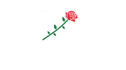 ROSE SULZFELD